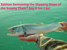 salmon-580429_1280